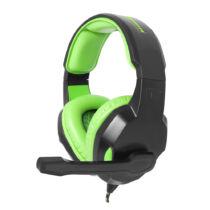 ESPERANZA STEREO HEADPHONES WITH MICROPHONE FOR GAMERS COBRA (EGH350G)