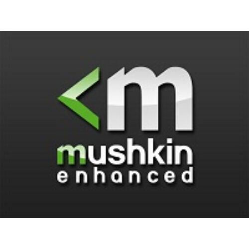 Mushkin MRB4U320GJJM16GX2 - 32 GB - 2 x 16 GB - DDR4 (MRB4U320GJJM16GX2)